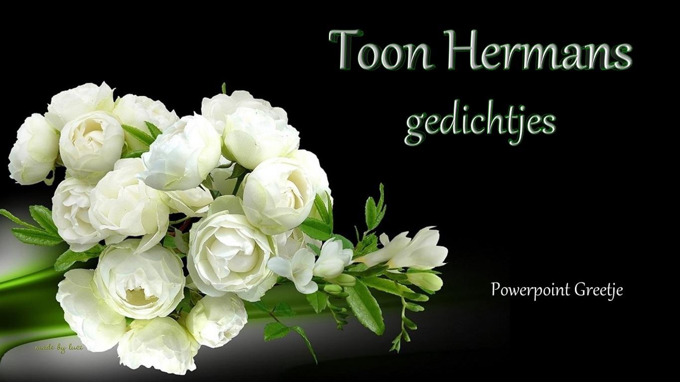 Toon Hermans Gedichtjes Powerpoint Greetje